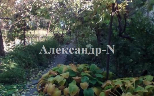 1-этажный дом (Ореховая/Писарева) - улица Ореховая/Писарева за