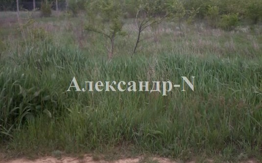 Участок (Любополь//Надежда) - улица Любополь//Надежда за