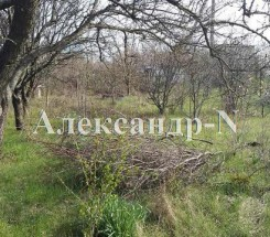 Участок (Дачное/Южная 5-Я/Чайка) - улица Дачное/Южная 5-Я/Чайка за 112 000 грн.