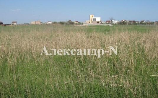 Участок (Фонтанка/Зимняя) - улица Фонтанка/Зимняя за