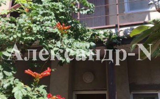 2-этажный дом (Фонтанка/Молодежная) - улица Фонтанка/Молодежная за