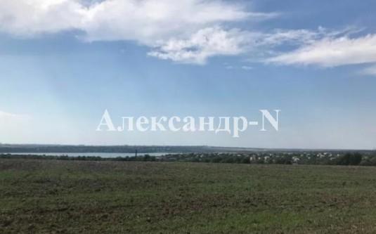 Участок (Новая Дофиновка/Центральная) - улица Новая Дофиновка/Центральная за