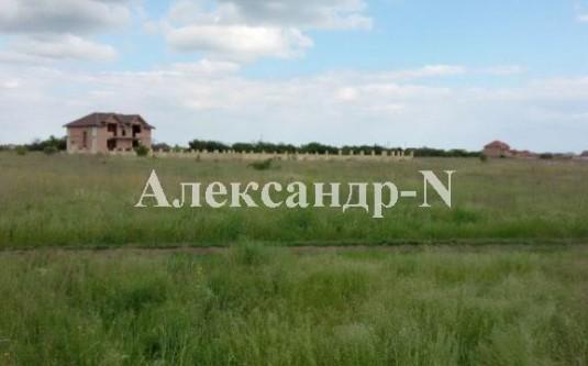 Участок (Фонтанка/Чумацкая) - улица Фонтанка/Чумацкая за