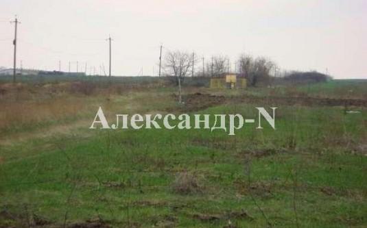 Участок (Александровка/Спортивная) - улица Александровка/Спортивная за