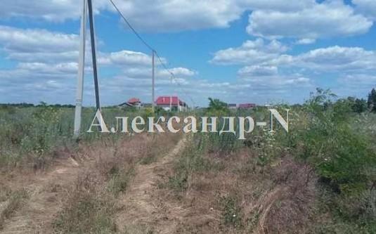Участок (Фонтанка/Новая) - улица Фонтанка/Новая за