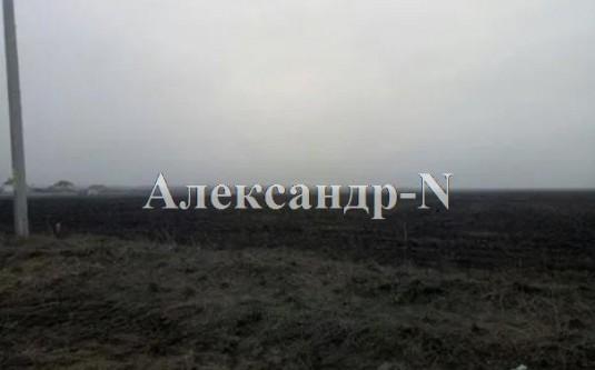 Участок (Фонтанка/Мичурина) - улица Фонтанка/Мичурина за