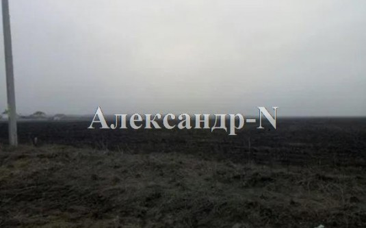 Участок (Фонтанка/Филатова Ак.) - улица Фонтанка/Филатова Ак. за