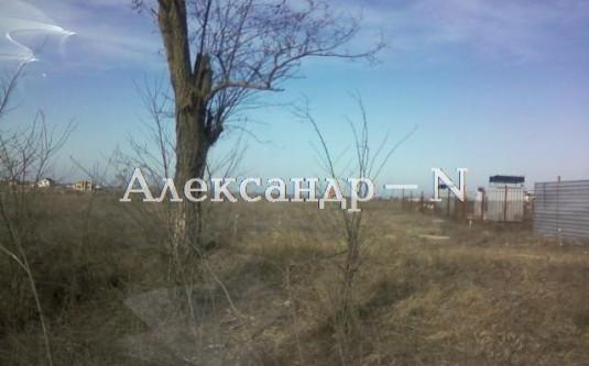 Участок (Новая Дофиновка/Курортная/Центральная) - улица Новая Дофиновка/Курортная/Центральная за