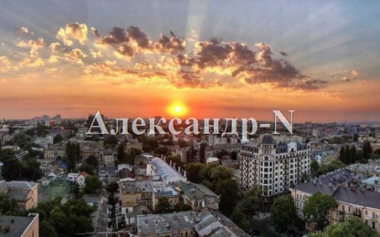 1-комнатная квартира (Базарная/Парк Шевченко) - улица Базарная/Парк Шевченко за